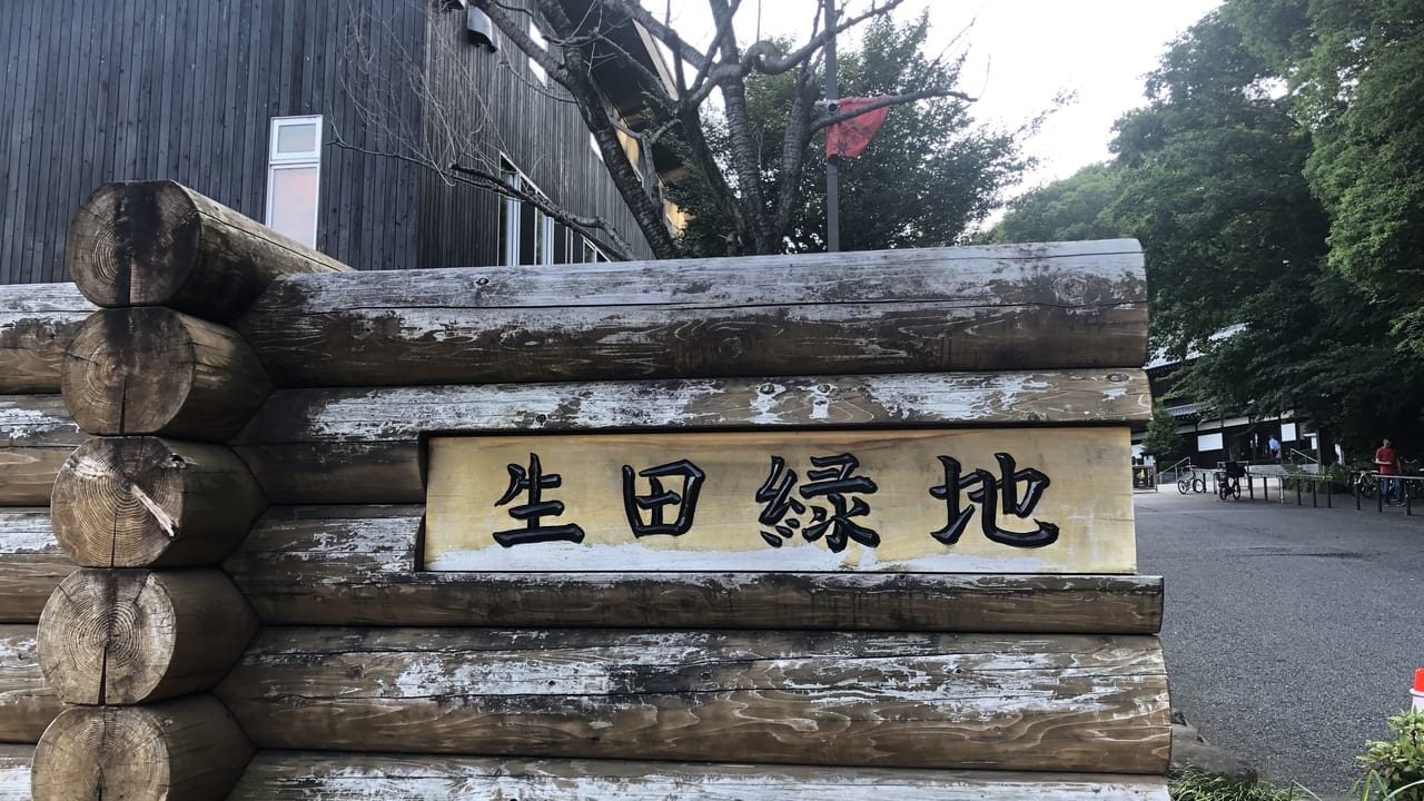 生田緑地2019年撮影