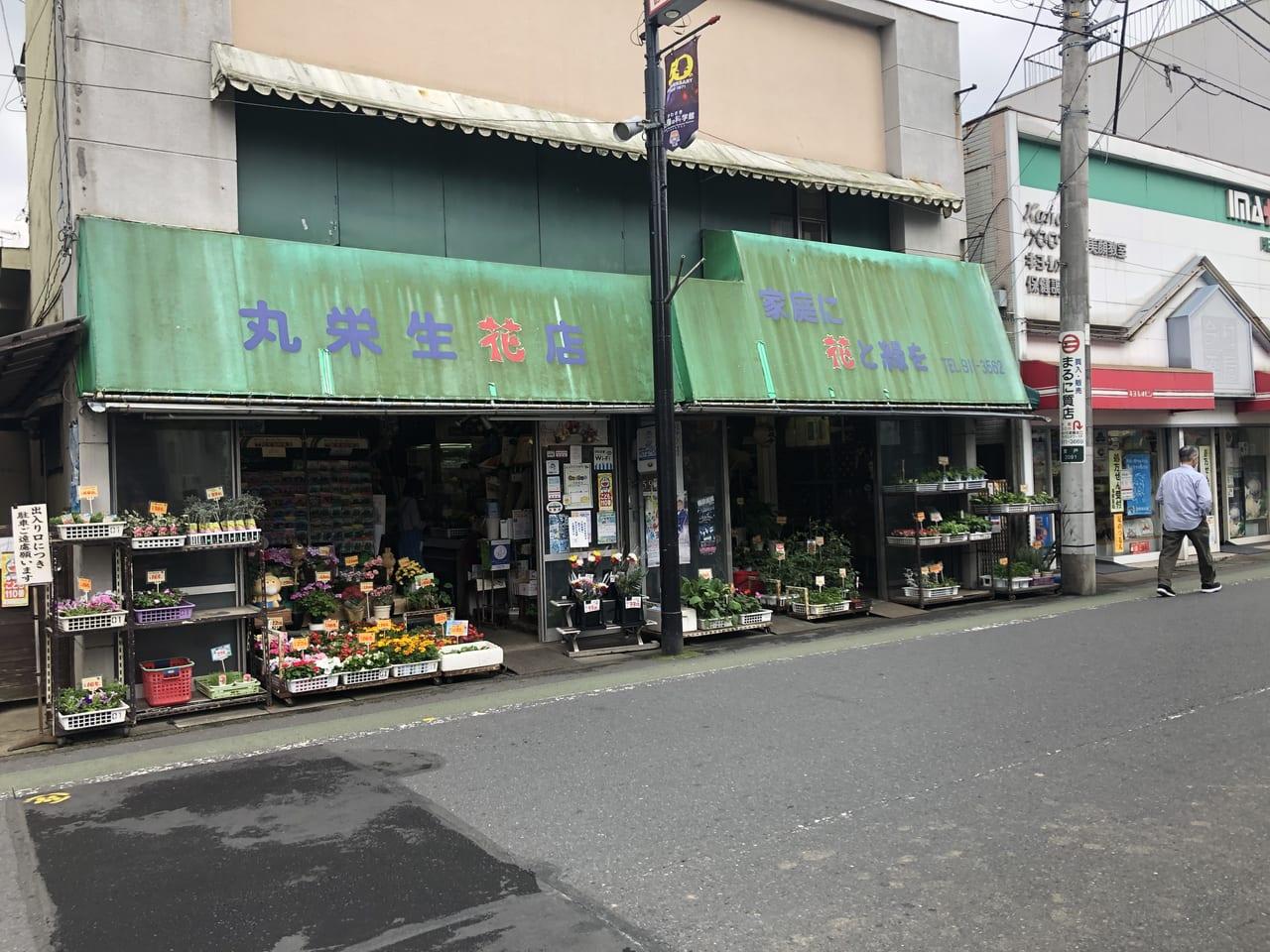 丸栄生花店